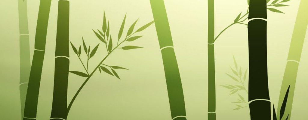 bamboo_1024x768